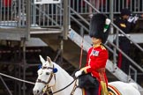 The Colonel's Review 2015. Horse Guards Parade, Westminster, London,  United Kingdom, on 06 June 2015 at 11:31, image #358