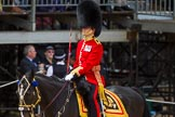 The Colonel's Review 2015. Horse Guards Parade, Westminster, London,  United Kingdom, on 06 June 2015 at 11:32, image #359