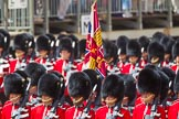The Colonel's Review 2015. Horse Guards Parade, Westminster, London,  United Kingdom, on 06 June 2015 at 11:32, image #360
