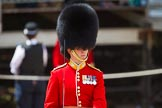 The Colonel's Review 2015. Horse Guards Parade, Westminster, London,  United Kingdom, on 06 June 2015 at 11:32, image #362