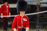 The Colonel's Review 2015. Horse Guards Parade, Westminster, London,  United Kingdom, on 06 June 2015 at 11:32, image #363