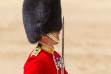 The Colonel's Review 2015. Horse Guards Parade, Westminster, London,  United Kingdom, on 06 June 2015 at 11:32, image #366