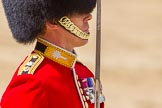 The Colonel's Review 2015. Horse Guards Parade, Westminster, London,  United Kingdom, on 06 June 2015 at 11:32, image #367