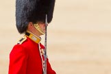The Colonel's Review 2015. Horse Guards Parade, Westminster, London,  United Kingdom, on 06 June 2015 at 11:33, image #368