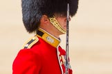 The Colonel's Review 2015. Horse Guards Parade, Westminster, London,  United Kingdom, on 06 June 2015 at 11:33, image #369