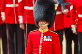 The Colonel's Review 2015. Horse Guards Parade, Westminster, London,  United Kingdom, on 06 June 2015 at 11:33, image #371