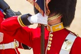 The Colonel's Review 2015. Horse Guards Parade, Westminster, London,  United Kingdom, on 06 June 2015 at 11:33, image #373