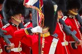 The Colonel's Review 2015. Horse Guards Parade, Westminster, London,  United Kingdom, on 06 June 2015 at 11:33, image #374