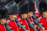 The Colonel's Review 2015. Horse Guards Parade, Westminster, London,  United Kingdom, on 06 June 2015 at 11:33, image #378