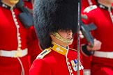 The Colonel's Review 2015. Horse Guards Parade, Westminster, London,  United Kingdom, on 06 June 2015 at 11:34, image #379