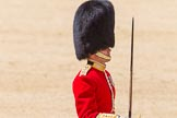 The Colonel's Review 2015. Horse Guards Parade, Westminster, London,  United Kingdom, on 06 June 2015 at 11:34, image #380