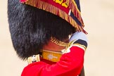 The Colonel's Review 2015. Horse Guards Parade, Westminster, London,  United Kingdom, on 06 June 2015 at 11:34, image #381