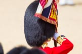 The Colonel's Review 2015. Horse Guards Parade, Westminster, London,  United Kingdom, on 06 June 2015 at 11:34, image #382