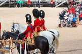 The Colonel's Review 2015. Horse Guards Parade, Westminster, London,  United Kingdom, on 06 June 2015 at 11:35, image #387