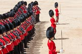 The Colonel's Review 2015. Horse Guards Parade, Westminster, London,  United Kingdom, on 06 June 2015 at 11:35, image #390