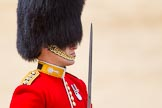 The Colonel's Review 2015. Horse Guards Parade, Westminster, London,  United Kingdom, on 06 June 2015 at 11:36, image #393