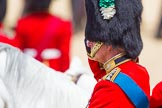 The Colonel's Review 2015. Horse Guards Parade, Westminster, London,  United Kingdom, on 06 June 2015 at 11:37, image #396