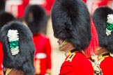 The Colonel's Review 2015. Horse Guards Parade, Westminster, London,  United Kingdom, on 06 June 2015 at 11:37, image #397