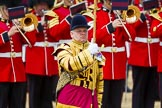 The Colonel's Review 2015. Horse Guards Parade, Westminster, London,  United Kingdom, on 06 June 2015 at 11:37, image #398