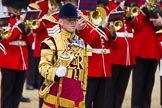 The Colonel's Review 2015. Horse Guards Parade, Westminster, London,  United Kingdom, on 06 June 2015 at 11:37, image #401