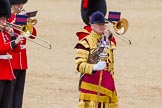 The Colonel's Review 2015. Horse Guards Parade, Westminster, London,  United Kingdom, on 06 June 2015 at 11:37, image #402