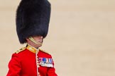 The Colonel's Review 2015. Horse Guards Parade, Westminster, London,  United Kingdom, on 06 June 2015 at 11:38, image #403