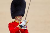 The Colonel's Review 2015. Horse Guards Parade, Westminster, London,  United Kingdom, on 06 June 2015 at 11:38, image #404
