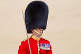 The Colonel's Review 2015. Horse Guards Parade, Westminster, London,  United Kingdom, on 06 June 2015 at 11:38, image #405