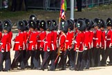 The Colonel's Review 2015. Horse Guards Parade, Westminster, London,  United Kingdom, on 06 June 2015 at 11:38, image #406
