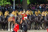 The Colonel's Review 2015. Horse Guards Parade, Westminster, London,  United Kingdom, on 06 June 2015 at 11:39, image #412