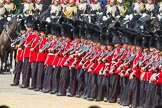The Colonel's Review 2015. Horse Guards Parade, Westminster, London,  United Kingdom, on 06 June 2015 at 11:40, image #415