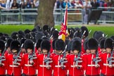 The Colonel's Review 2015. Horse Guards Parade, Westminster, London,  United Kingdom, on 06 June 2015 at 11:41, image #423