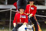 The Colonel's Review 2015. Horse Guards Parade, Westminster, London,  United Kingdom, on 06 June 2015 at 11:42, image #425