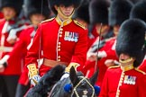 The Colonel's Review 2015. Horse Guards Parade, Westminster, London,  United Kingdom, on 06 June 2015 at 11:42, image #427