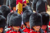 The Colonel's Review 2015. Horse Guards Parade, Westminster, London,  United Kingdom, on 06 June 2015 at 11:42, image #428