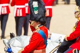 The Colonel's Review 2015. Horse Guards Parade, Westminster, London,  United Kingdom, on 06 June 2015 at 11:44, image #433