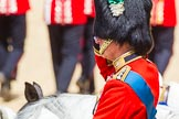 The Colonel's Review 2015. Horse Guards Parade, Westminster, London,  United Kingdom, on 06 June 2015 at 11:44, image #434