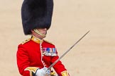 The Colonel's Review 2015. Horse Guards Parade, Westminster, London,  United Kingdom, on 06 June 2015 at 11:45, image #441