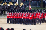 The Colonel's Review 2015. Horse Guards Parade, Westminster, London,  United Kingdom, on 06 June 2015 at 11:46, image #442