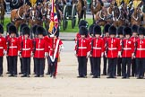 The Colonel's Review 2015. Horse Guards Parade, Westminster, London,  United Kingdom, on 06 June 2015 at 11:48, image #445