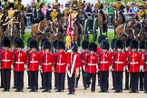 The Colonel's Review 2015. Horse Guards Parade, Westminster, London,  United Kingdom, on 06 June 2015 at 11:48, image #446