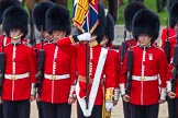The Colonel's Review 2015. Horse Guards Parade, Westminster, London,  United Kingdom, on 06 June 2015 at 11:48, image #447