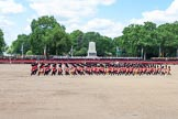 The Colonel's Review 2015. Horse Guards Parade, Westminster, London,  United Kingdom, on 06 June 2015 at 11:49, image #448