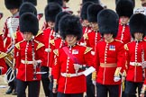 The Colonel's Review 2015. Horse Guards Parade, Westminster, London,  United Kingdom, on 06 June 2015 at 11:49, image #452