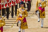 The Colonel's Review 2015. Horse Guards Parade, Westminster, London,  United Kingdom, on 06 June 2015 at 11:50, image #458