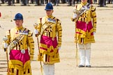 The Colonel's Review 2015. Horse Guards Parade, Westminster, London,  United Kingdom, on 06 June 2015 at 11:50, image #460