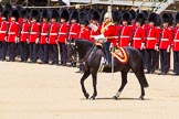 The Colonel's Review 2015. Horse Guards Parade, Westminster, London,  United Kingdom, on 06 June 2015 at 11:50, image #462