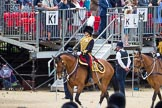 The Colonel's Review 2015. Horse Guards Parade, Westminster, London,  United Kingdom, on 06 June 2015 at 11:51, image #470