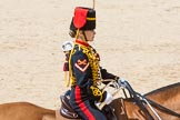 The Colonel's Review 2015. Horse Guards Parade, Westminster, London,  United Kingdom, on 06 June 2015 at 11:52, image #481