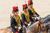 The Colonel's Review 2015. Horse Guards Parade, Westminster, London,  United Kingdom, on 06 June 2015 at 11:52, image #483